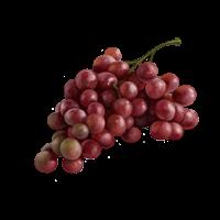 Un grappolo d'uva