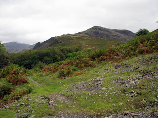 Hard Knott from path to Harter Fell