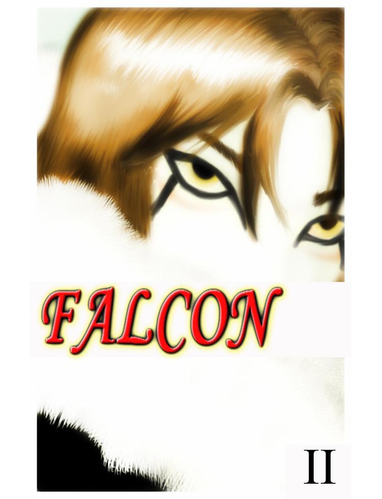Falcon 2 - Capa