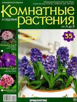 Комнатные и садовые растения от А до Я №35 2014
