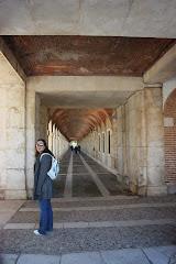 Rodeando el Palacio de Aranjuez