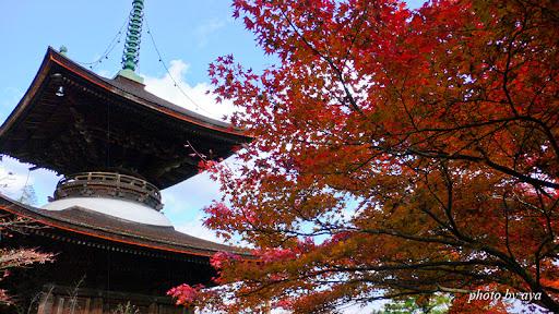 多宝塔と紅葉
