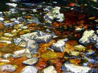 Clapham Beck colours