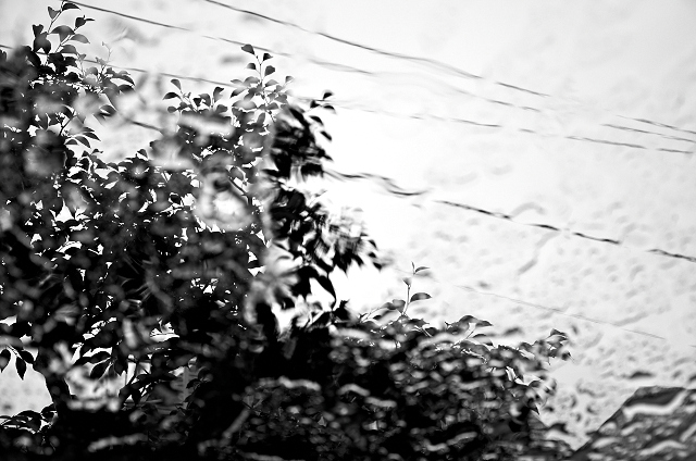 Shinjuku Mad - Rain like whisper, corrodes silence 05