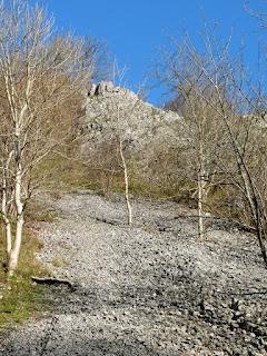Scree slope in Hal Dale