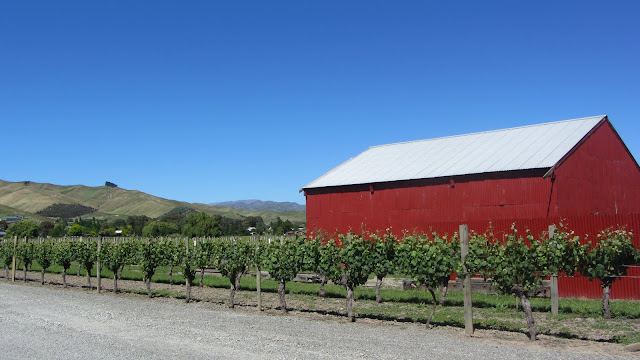 Lawson's Dry Hills winery.