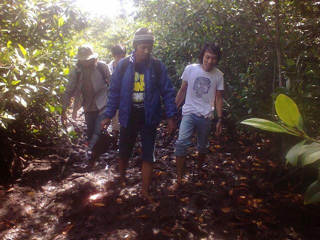 menyusuri hutan bakau gonda campalagian