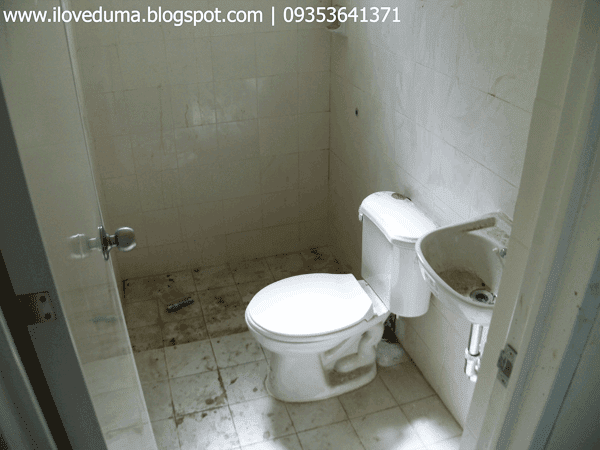 Dumaguete house for sale view of the toilet and bathroom nearing completion - Del Pilar picture
