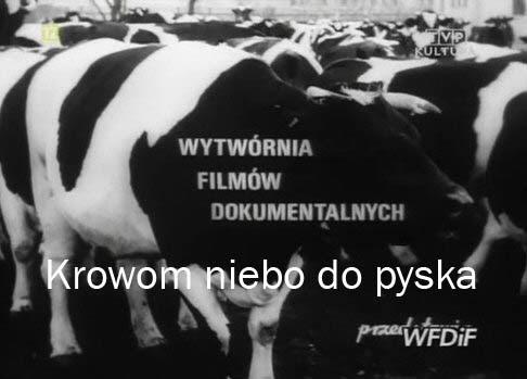 Krowom niebo do pyska (1976) PL.TVRip.XviD / PL