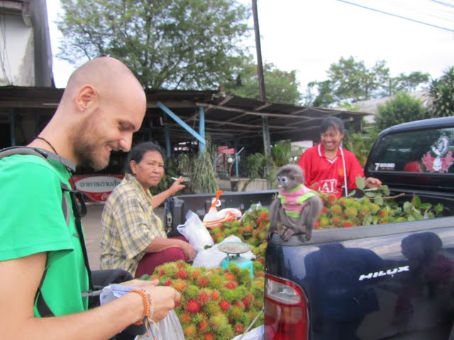 Buying rambutan from a Thai family