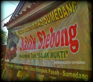 Salak Slebong