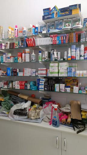 Dalmatas Pet Shop, R. Artur Bernardes, 93, Bonfim - Bonfim, Salvador - BA, 40415-050, Brasil, Loja_de_animais, estado Bahia