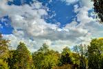 Himmel und Grün