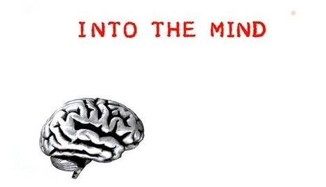Przenikn±æ umys³ / Into The Mind (2010)  PL.TVRip.XviD / Lektor PL