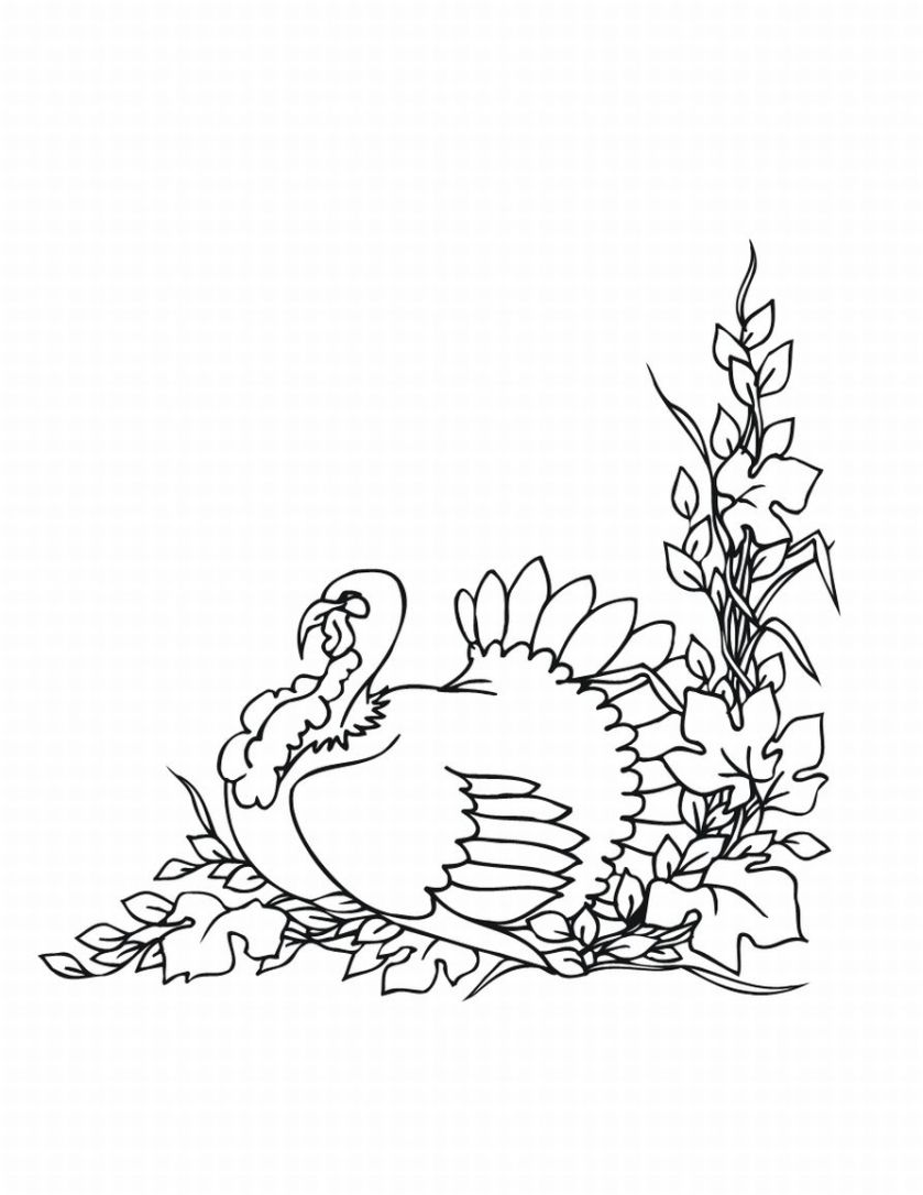 Thanksgiving coloring pages free printable for Thanksgiving coloring pages online