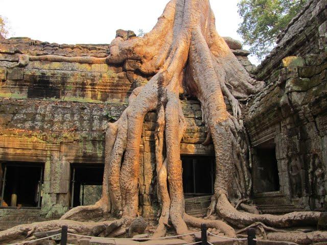 Tha Phrom