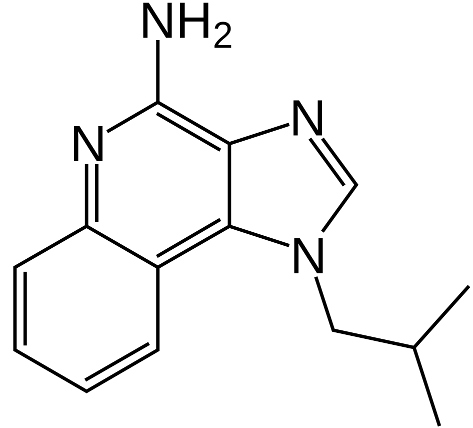 Imiquimod structure
