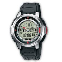 Casio Standard : AQF-100W