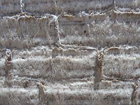 Mur de sel