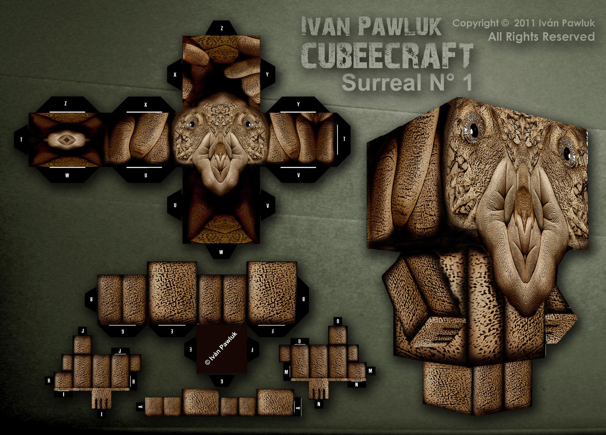Cubeecraft Iván Pawluk (Surereal N° 1 )