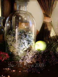 Bottled Beauty...