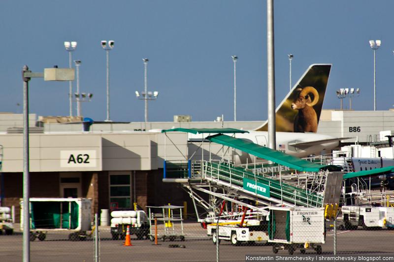 USA Colorado Denver International Airport Frontier Airlines Airbus A320 N202FR Colorado, the Bighorn Sheep США Колорадо Денвер Международный Аэропорт Фронтир Эйрлайнс Аэробус Эйрбас А320 Толсторог Колорадо Хвост Самолёта