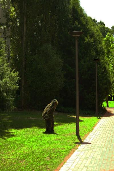 yowie in glebe park