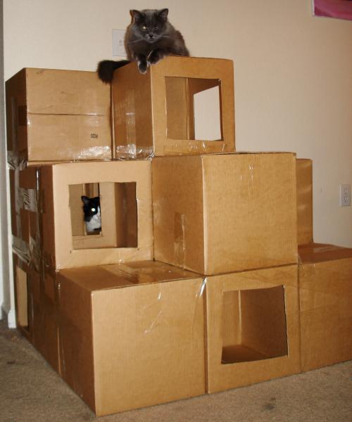 домик для кошек из коробок руководство неделимый инь-янь