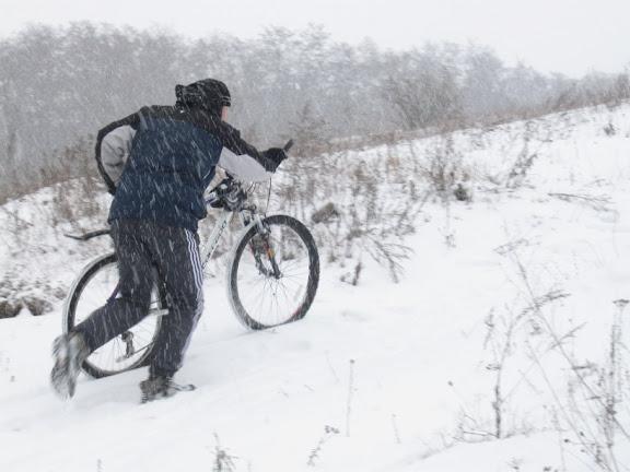 бугайка зимой