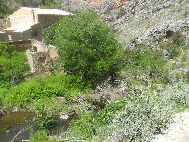 zona de Escalada Barranc dels Tarongers Sector Granainos 2 5