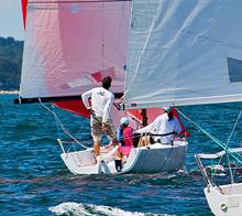 J/70 family sailing