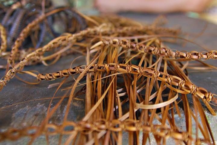 Agsam fibers
