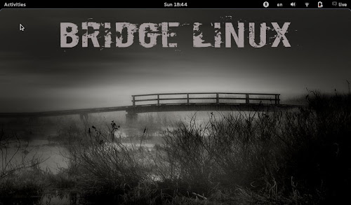 Bridge Linux 2012.5