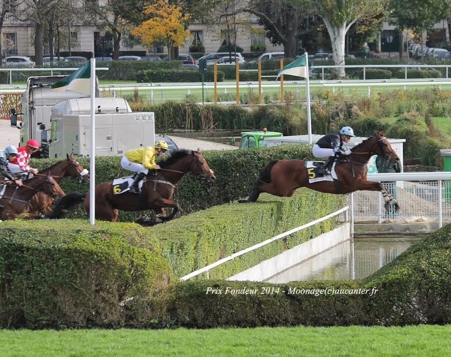 Photos Auteuil 2-11-2014 (48h de l'obstacle) IMG_5278