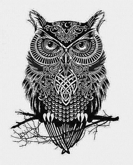 traditional owl tattoo  Tumblr
