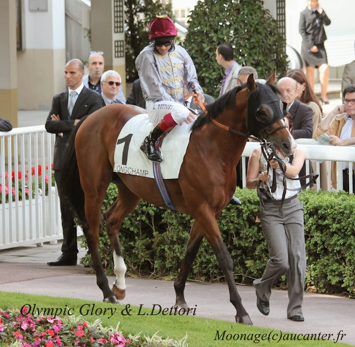 Photos Longchamp 25-05-2014 IMG_1297