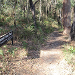 Flannel Flower track sign (202576)