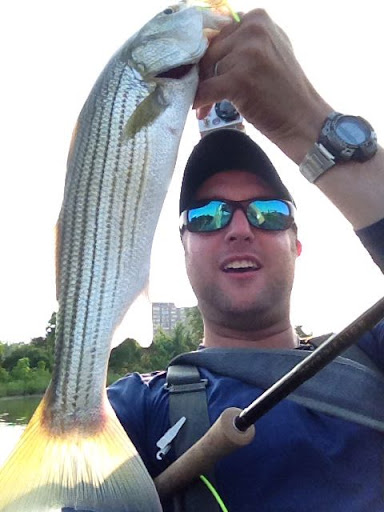 Four Mile Run Striped Bass