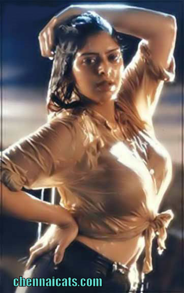 Hot Celebrity Bollywood Nagma Very Cute Images-1060