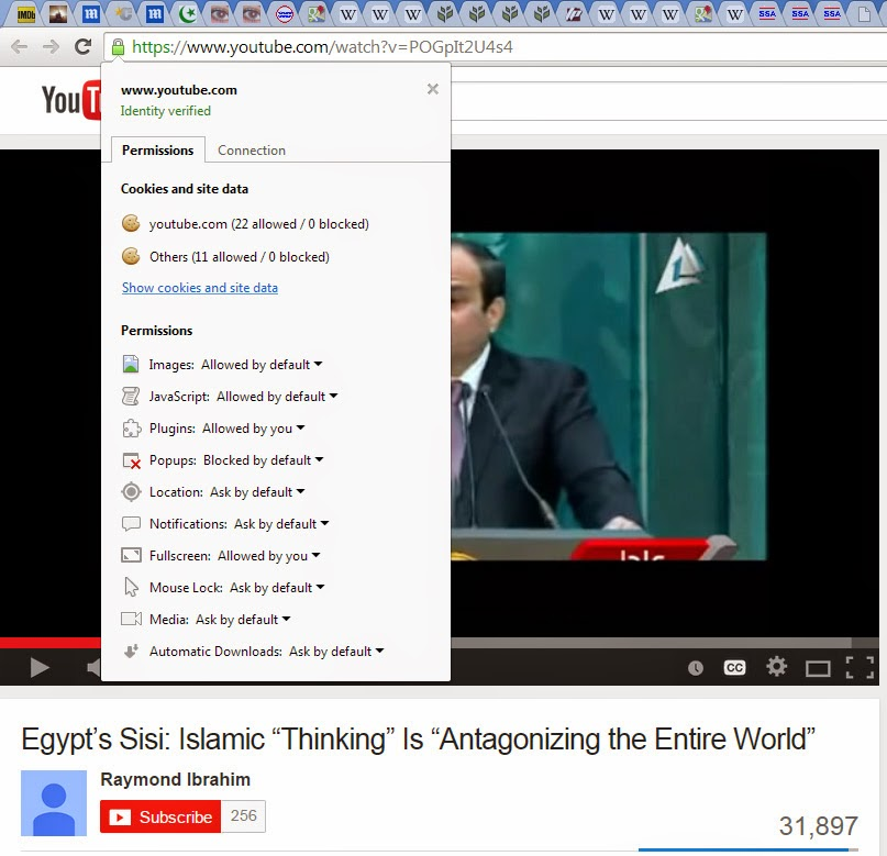 Why Can I See Subtitles in Internet Explorer But Not In