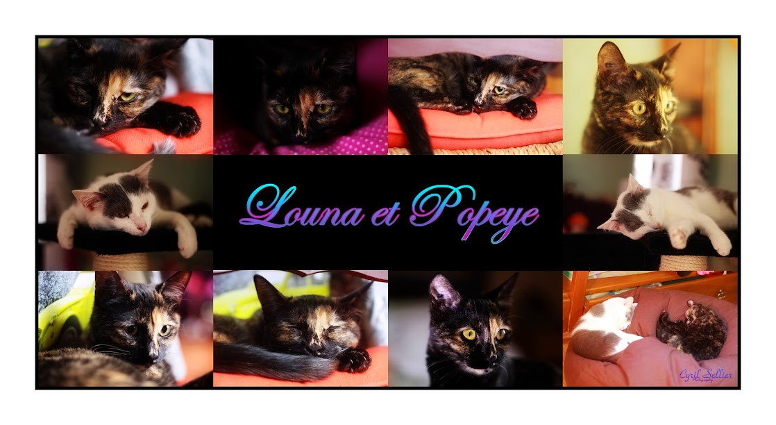 LOUNA - Page 6 Louna2