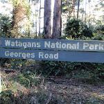 Watagans National Park  (61871)
