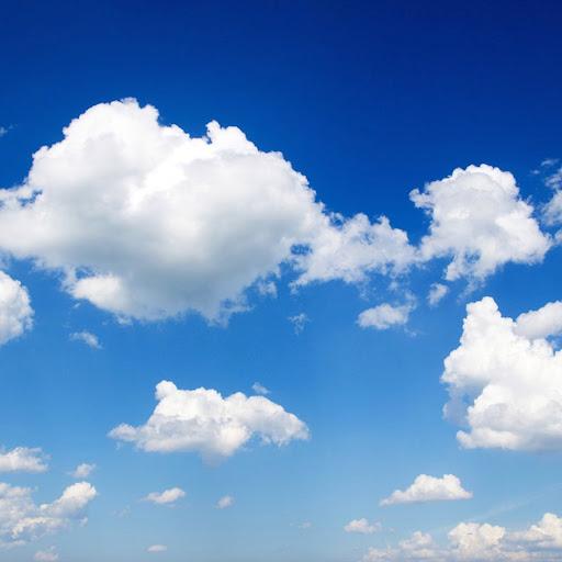 Rebecca Shanks Photo 13