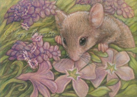 Spring Flower Picture on Art By Lynn Bonnette   Purple Spring Flowers   Mouse