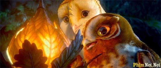 Hộ Vệ Xứ Ga'hoole - Legend Of The Guardians: The Owls Of Ga'hoole - Image 1
