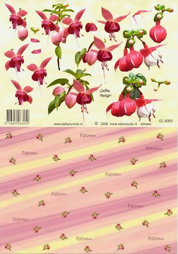 GL 6005 Betsy Lurvink-bloemen+achtergrond.jpg