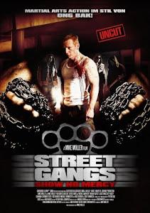 Võ Sĩ Đường Phố - Street Gangs - Urban Fighter poster