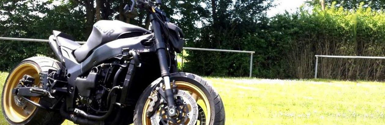 Lakierowany Proszkowo Projekt DG's Moto Serwis PREDATOR Kawasaki