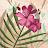Steven Apell avatar image