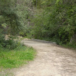 The servicetrail just east of Eastern Arterial Rd (23067)